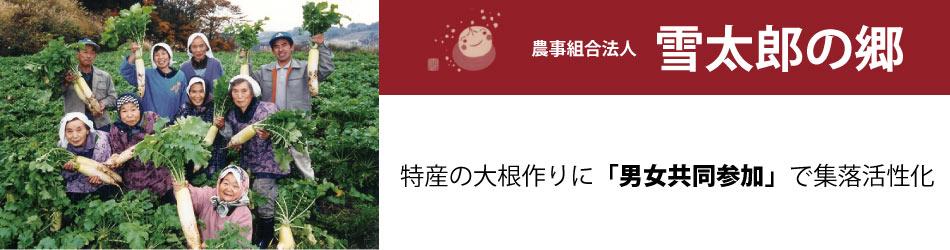 雪太郎大根